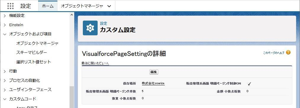 VisualforcePageSetting の詳細