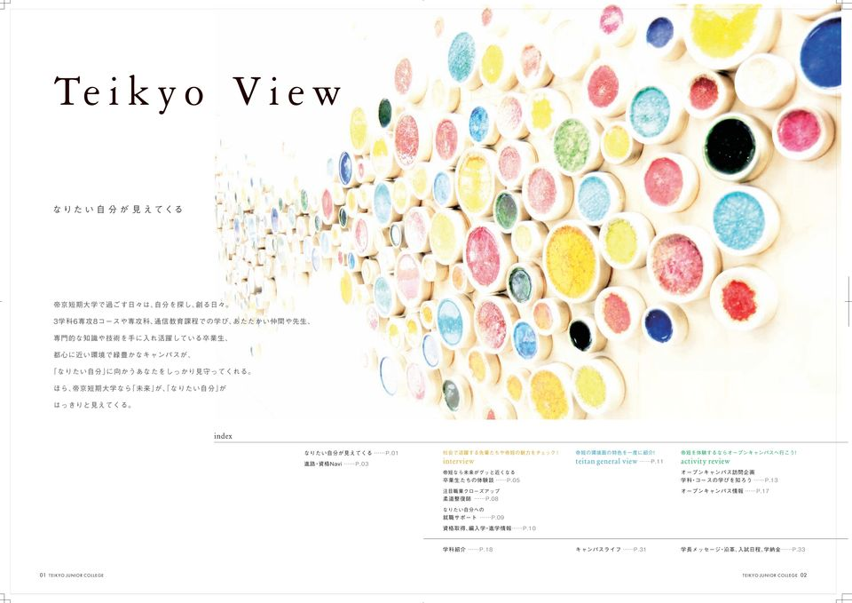 activity review 0TEIKYO
