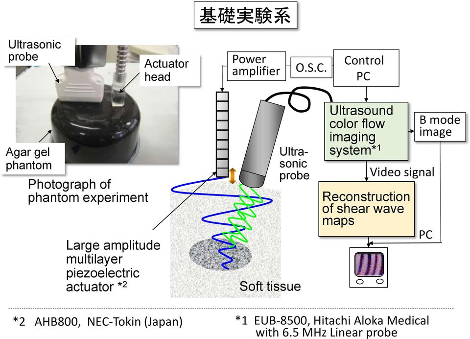 piezoelectric actuator * 2 Ultrasonic probe Soft tissue Ultrasound color flow imaging system* 1