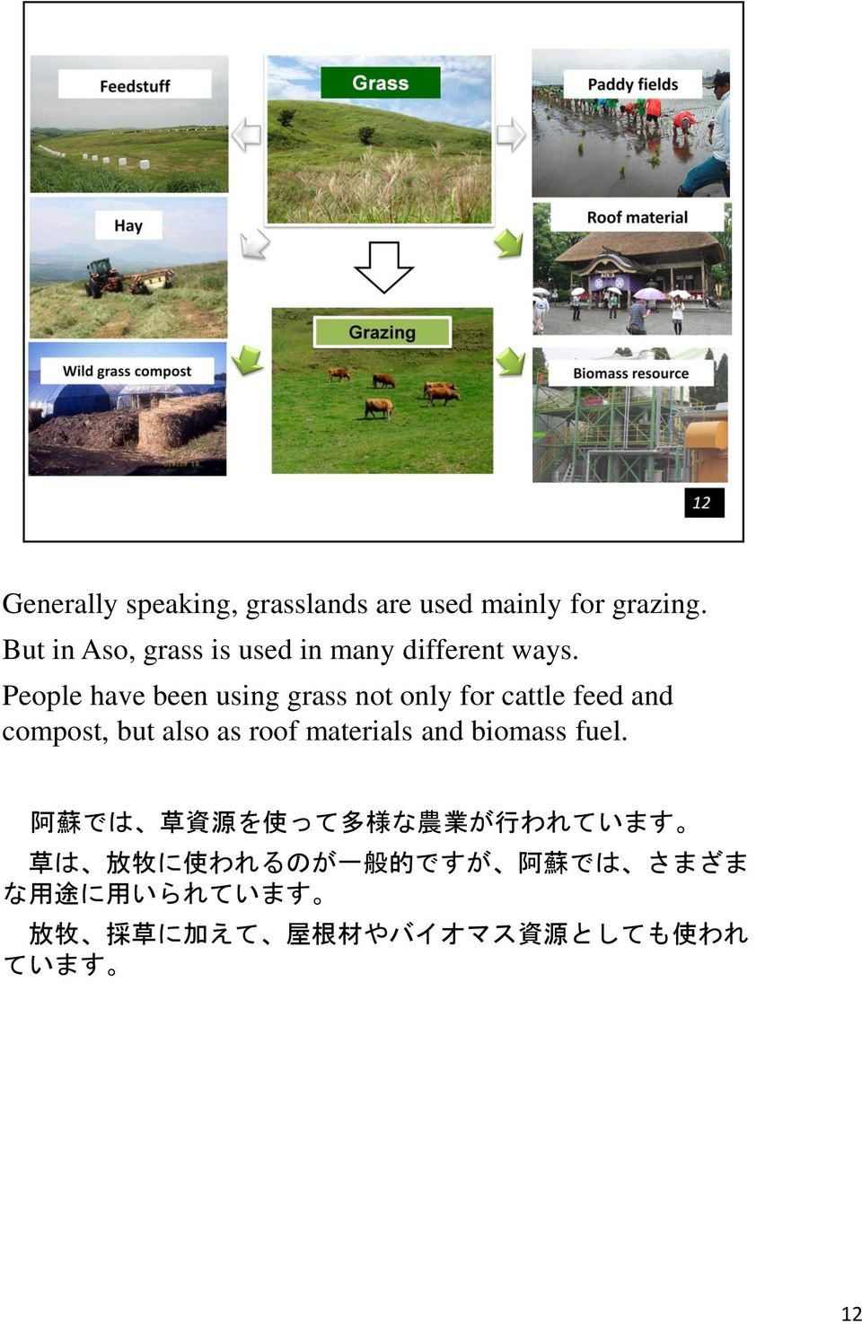 People have been using grass not only for cattle feed and compost, but also as roof