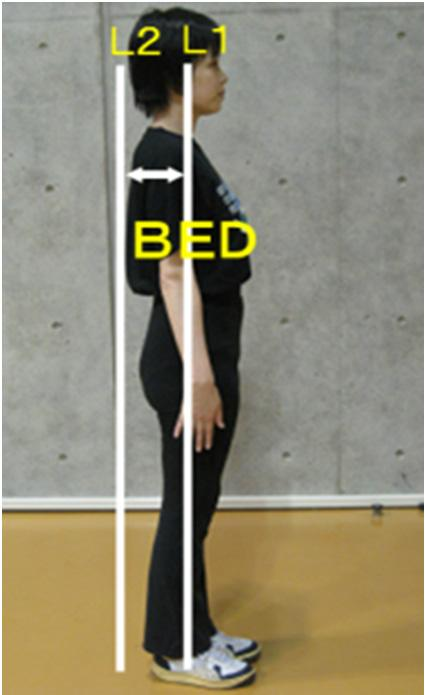 BED Pre FT Pre Post Post AT t- Ⅳ. 結果及び考察 1. トレーニングの即時的効果について Pre..kg FT..kg Pre..cm FT..cm Pre..cm FT..cm Pre..cm² FT..cm² Pre..cm² FT..cm² Pre.. FT.. Pre..cm FT..cm BED Pre.